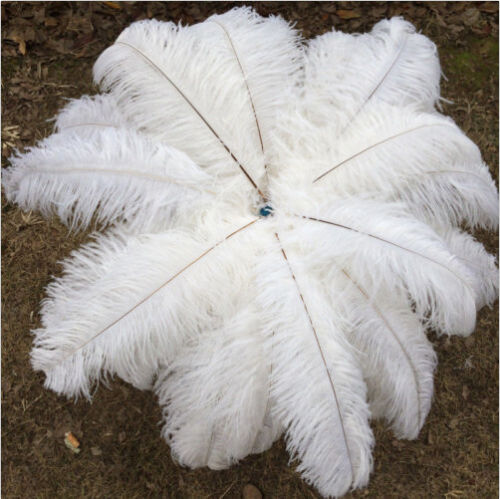 Free shipping 1000pcs 1214inches3035cm white ostrich feathers decor wedding