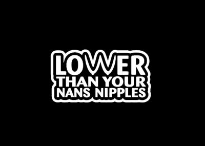 LOWER THAN YOUR WIFE NIPPLES truck sticker vinyl funny car decal euro vw lowered