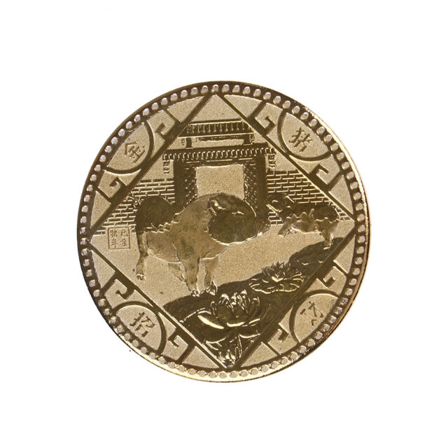 The year of the pig silver chinese zodiac 2019 anniversary coins souvenir coinVK