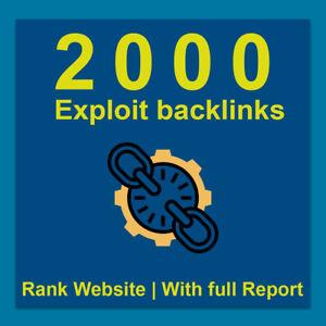 2000-Exploit-backlinks-Up-your-website-seo-service-Average-unique-domains-700