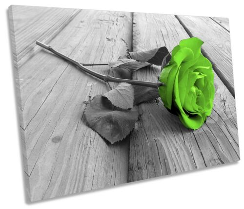 Rose Flower Floral Floorboard Picture SINGLE CANVAS WALL ART Print Green
