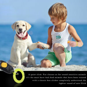 Tier-Hund-Katze-Welpe-Kitten-Haustier-Training-Clicker-Gehorsam-Hilfe-Armband