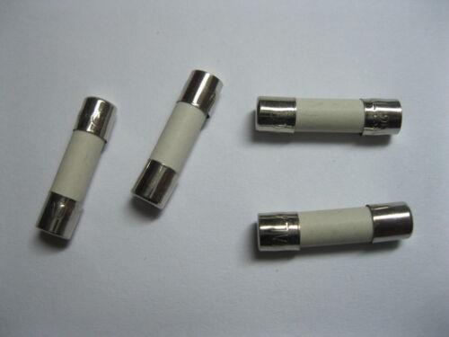400 Pcs Slow Blow Ceramic Fuse 5A T5A 250V 5mm x 20mm 5x20mm 520 New