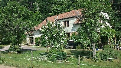 Original Wanderreiten In Der Pfalz! Urlaub Für Pferd Und Reiter Spezieller Sommer Sale