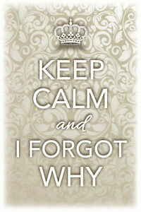 Keep-Calm-and-I-Forgot-Why-Tin-Sign-Shield-Arched-Tin-Sign-20-x-30-cm-CC0480