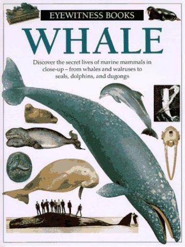 Whale (Eyewitness Books)
