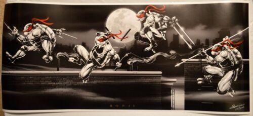 TURTLES ORIGINS Ltd Ed Print #213//1000 HAND SIGNED Artist Damon Bowie w COA TMNT