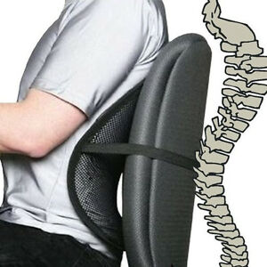 Details About Mesh Back Support Lumbar Lower Back Cushion Pain Relief Car Seat Office Seat New
