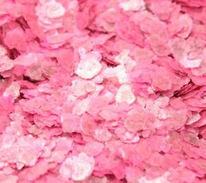 Mica Flakes - Neon Pink - Natural Mica  - The Professionals Choice - 311-4369