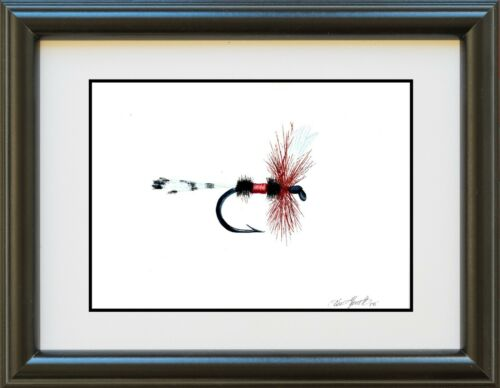 fishing gift watercolor print Royal Coachman Dry Fly Print art fly fishing