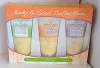 3 Pc Healing Garden Body Scrub Beauty Desire Renew Plum Ginger Green Tea Skin