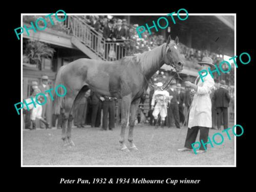 OLD 6 X 4 HORSE RACING PHOTO OF PETER PAN, 1932 & 1934 MELBOURNE CUP WINNER 1