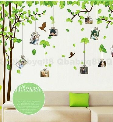Large Photo Frame Stunning Tree Wall decals Removable stickers decor home art