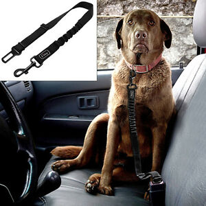 Details about Safety Dog Car Seat Belt Clip Harness Restraint Leash