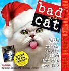 Bad Cat by Jim Edgar (Paperback / softback, 2004)