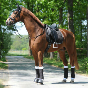Kavalkade KavalEasy Crystal Dressage Saddlecloth