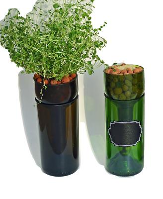 Hydroponic Garden Gift Self Watering Wine Bottle Indoor Herb Garden In Kitchen Ebay
