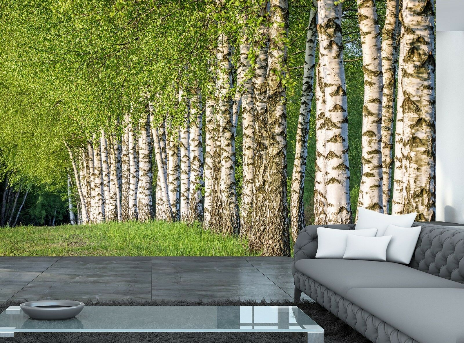 Birch Forest Photo Wallpaper Wall Mural DECOR Paper Poster Wall art Free Paste