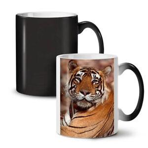 Cat Animal Tiger Photo NEW Colour Changing Tea Coffee Mug 11 oz | Wellcoda