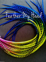Feather Hair Extensions Long Multi Color Rainbow Premium Salon Grade Whiting