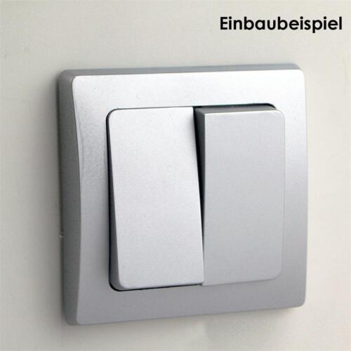 DELPHI 2-fach Serien-Schalter Lichtschalter Wandschalter Silber Doppelschalter