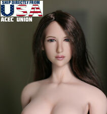 1/6 Female Head Sculpt Long Hair DR001 For Hot Toys Phicen Figure U.S.A. SELLER