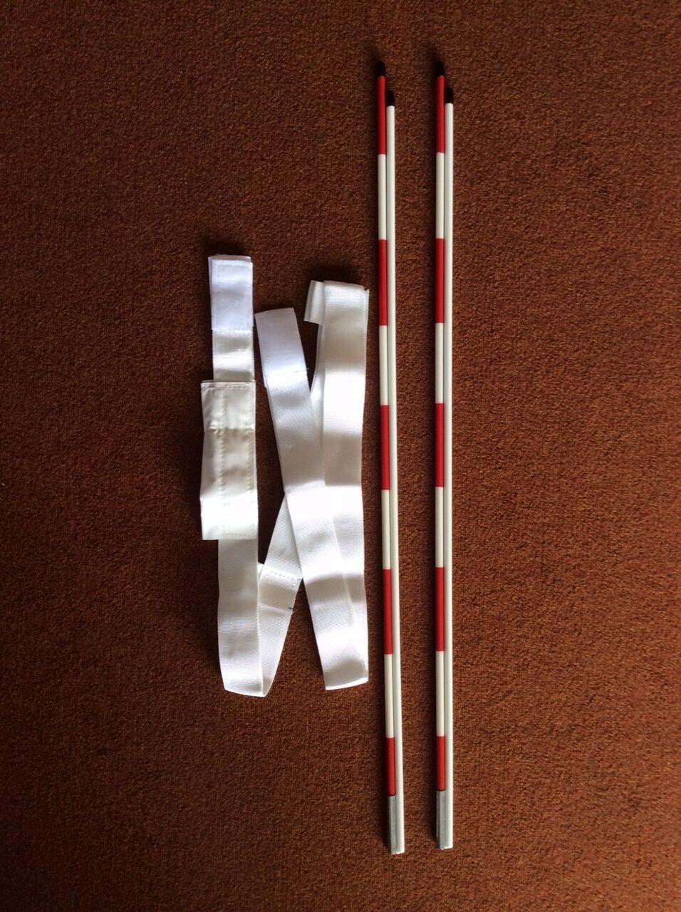 2 ANTENNEN X NETZWERK VOLLEYBALL VOLLEYBALL + PAAR TASCHEN PORTS  | Nutzen Sie Materialien voll aus