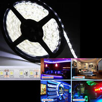 5m 300leds 3528 Smd Led Flexible Light Strip Cool White W/ Power & Connector