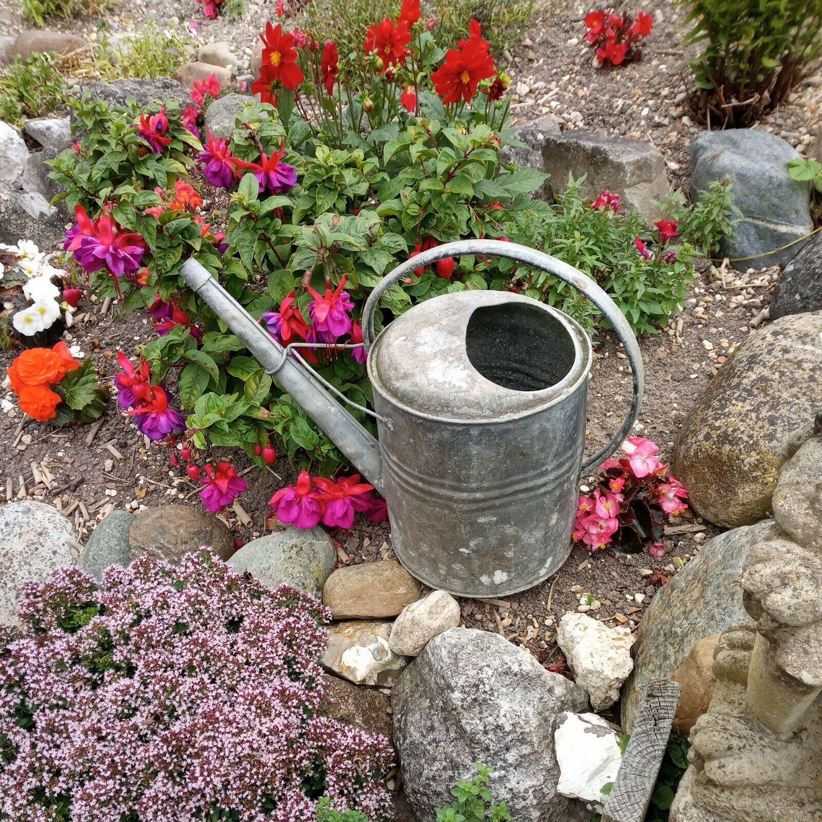 Antique E H & S Regina Lye 2 galllon Galvanised Watering can watertight Planter