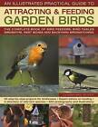 The Illustrated Practical Guide to Birds in the Garden: The Complete Book of Bird Feeders, Bird Tables, Birdbaths, Nest Boxes and Backyard Birdwatching by Dr Jen Green (Hardback, 2009)