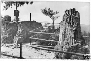 AK, Kurort Jonsdorf, Zittauer Gebirge, Die Orgel, 1959