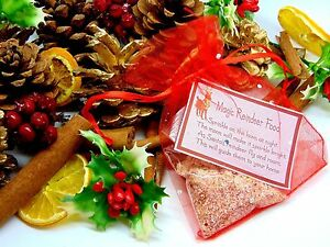 Magic-Reindeer-Food-Christmas-Eve-Kids-Activity-Tradition-Santa-Dust-Xmas