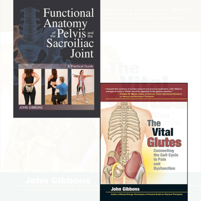 John Gibbons Collection Functional Anatomy Of The Pelvis And