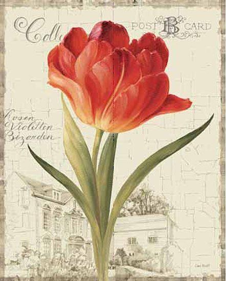 Lisa Vérification   Jardin Vue (III) Rouge Tulipe Civière-image de L' écran