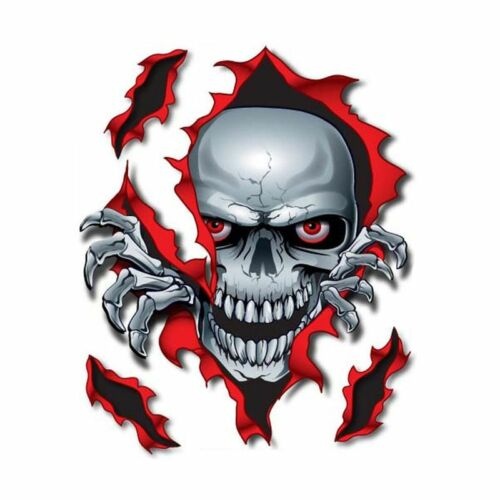 Universal Vehicles Pilot Decals Side Rip Skull Decal