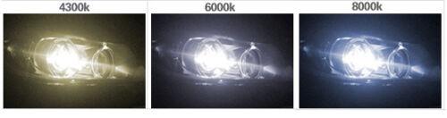 Skoda Superb 3U4 01-08 D2S HID Xenon OEM Replacement Headlight Bulbs 66240