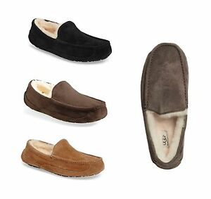ugg ascot moccasin slippers chestnut