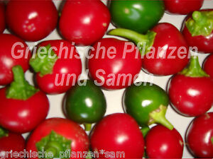 SWEET-CHERRY-Suesser-Kirsch-Chili-Chili-Gewuerzpaprika-10-Samen-Balkon
