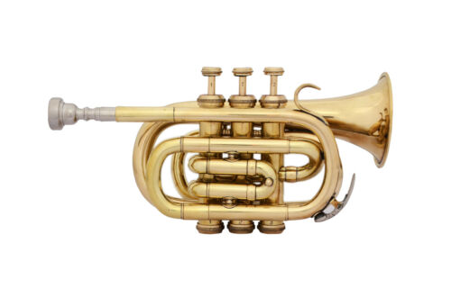 MARVELOUS! NEW BRASS Bb FLAT POCKET TRUMPET FREE HARD CASE+MP 6 DAYS DELIVERY