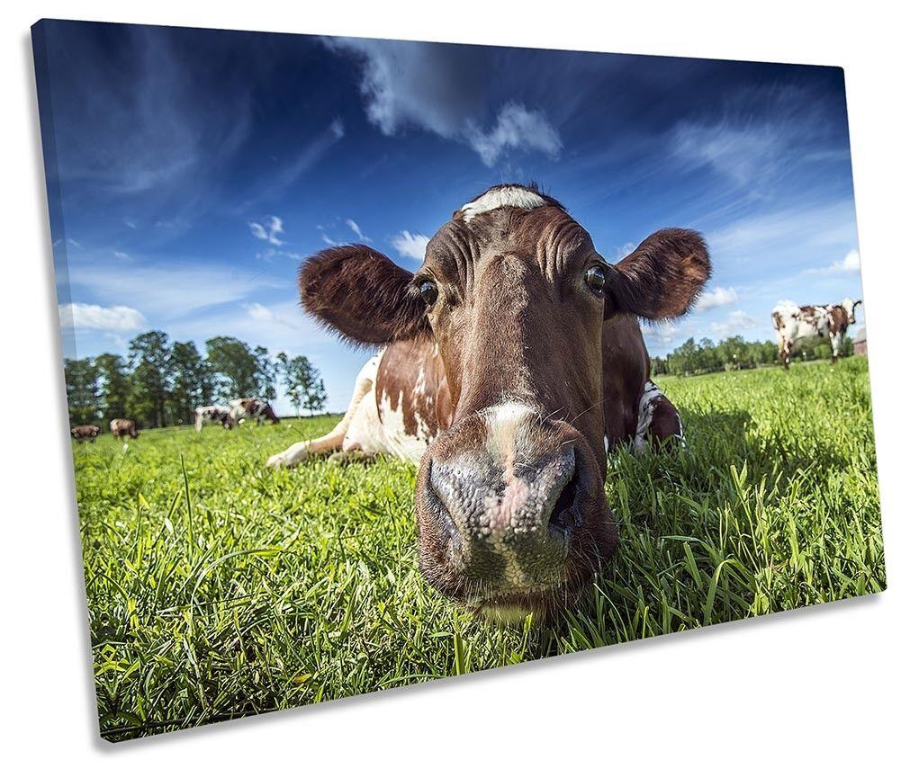 Farm Cow Field Picture SINGLE CANVAS WALL ART Print