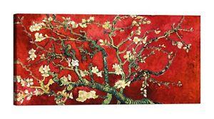 VINCENT-VAN-GOGH-Mandorlo-in-fiore-rosso-Stampa-su-tela-Canvas-effetto-dipinto