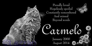 Personalized-Longhair-Longhaired-Cat-Pet-Memorial-12x6-Headstone-Grave-Marker