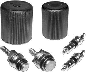 AC A//C System Cap /& Valve Cores Santech Rapid Seal Kit Air Conditioning Service