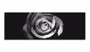 Leinwand-Bild-Bilder-schwarz-weiss-Rose-Blume-Natur-Bluete-Blaetter-Licht-hell-XXL