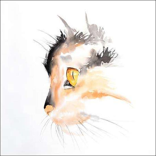 Atelier B  WaterFarbe Cat Face Profile Keilrahmen-Bild Leinwand Katze Aquarell
