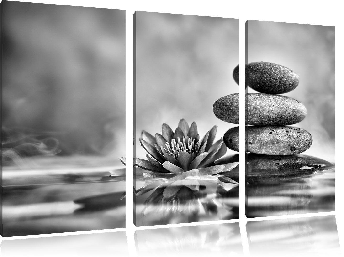 Hermoso Flor de Nenúfar con Piedras 3-Teiler Foto en en en Lienzo Decoración de Pared 386f36