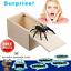 Wooden-Prank-Spider-Scare-Box-Hidden-in-Case-Trick-Play-Joke-Scarebox-Gag-Toy-1 thumbnail 5