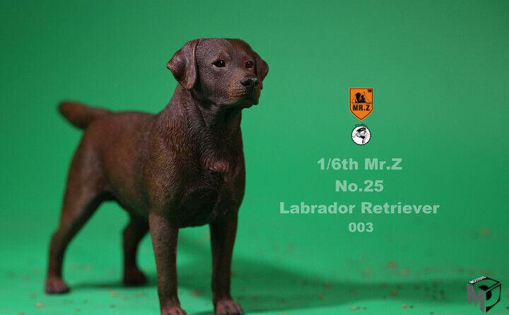 Mr. Z MRZ025 Labrador Retriever caza 1 6 Figura De Animal Perro Colección Modelo
