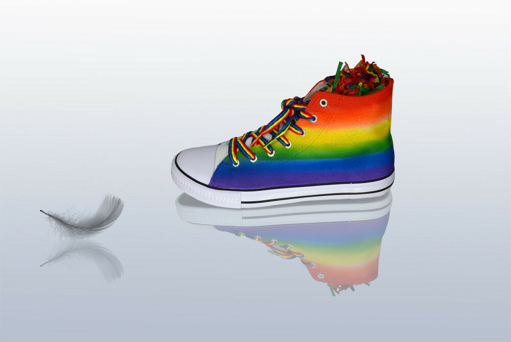 LGBT Rainbow Gay Pride Flag hand decorated sneakers all standard sizes.
