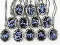 Zodiac locket CHOICE Astrology Gift box Star sign Constellation Necklace pendant